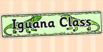 Iguana Class Display Banner - animals, rainforest, jungle, header