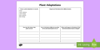 Plant Adaptations Research Activity Sheet - adaptation, plant adaption, leaves, plant water collection, plant food, plant food collection, scien