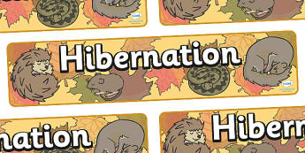 Hibernation Display Banner -  Winter, hibernate, display banner, display, winter words, Word card, flashcard, snowflake, snow, winter, frost, cold, ice, hat, gloves, display words