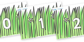 Numbers 0-31 on Wavy Grass - 0-31, foundation stage numeracy, Number recognition, Number flashcards, counting, number frieze, Display numbers, number posters