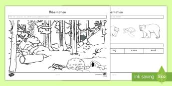 Hibernation Cut and Color Activity Sheet - Fall, Science, Hibernation, animals, Bears, Winter