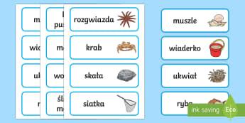 Karty Słownictwo morskie - morze, wakacje, lato, letnie, meduza, ryba, morski, Polish