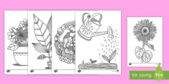 Plants and Growth-Themed Coloring Activity - color, plant cycle, art