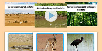 Australian Mangroves Deserts and Tropical Rainforests PowerPoints and Photo Packs - australia, Science, Habitats, Australian Curriculum, Living, Living Adventure, Good to Grow, Ready Set Grow, Life on Earth, Environment, Living Things, Animals, Plant