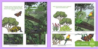 Australian Tropical Rainforest Habitat Booklet - science story, ACSSU211, Year 1 science, animal needs, plant needs, daintree,Australia