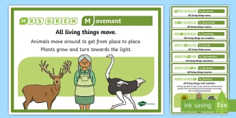 Mrs Gren Life Processes Display Posters - Mrs Green, life, process, life processes, display, poster, sign, characteristics, living things, live, living, movement, respiration, sensitivity, growth, reproduction, excretion, nutrition, prompt, help, KS2