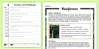 Year 5-6 Rainforests Differentiated Reading Comprehension Activity