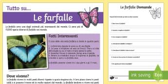 Monumenti Europei Lettura Comprensiva - farfalle, lettura, comprensiva, leggere, farfalla, scienze, ciclo, della, vita, italiano, italian