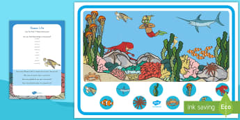 Ocean Life Can You Find...? Poster and Prompt Card Pack - Ocean, Ocean Animals, Ocean Life, Ocean Poster, Ocean Prompt Cards, Ocean Can You find, Can You find