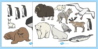 Polar Animals Cut Outs - polar, animals, cut outs, cut, role-play
