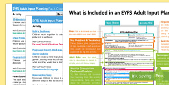EYFS Plants and Growth Adult Input Planning and Resource Pack Overview - EYFS, Early Years planning, Plants and Growth, flowers, seeds, growing, sunflower, beans.