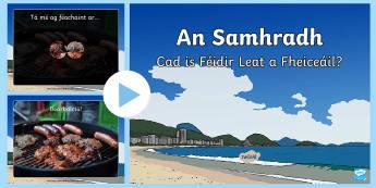 What Can You See? Summer PowerPoint Gaeilge - Gaeilge, Irish, Weather, Aimsir, Season, séasúr, summer, samhradh, language, teangea