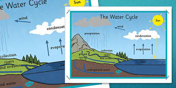 The Water Cycle Large Display Poster - water cycle, display poster, display