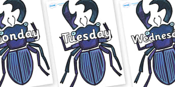 Days of the Week on Stag Beetle to Support Teaching on The Bad Tempered Ladybird - Days of the Week, Weeks poster, week, display, poster, frieze, Days, Day, Monday, Tuesday, Wednesday, Thursday, Friday, Saturday, Sunday