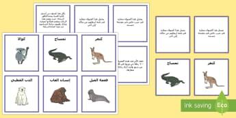 بطاقات مطابقة حول الأمومة المذهلة لبعض أنواع الحيوانات - حقائق، أمومة، لعب، نشاط، علوم، حيوان، بطاقات، مطابقة,Ar