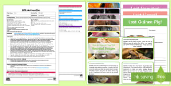 EYFS Safe Pets Adult Input Plan and Resource Pack - EYFS Pets, Animals, National Pet Month, pets, microchip, safety, lost, found, owner, care and concer