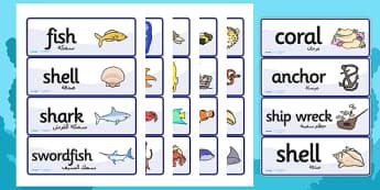 بطاقات كلمات عن تحت البحر إنجليزي عربي