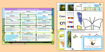 EYFS Life Cycle of a Butterfly Enhancement Ideas Resources Pack