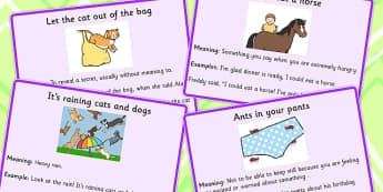 Animal Idioms Meaning Cards - animal, idioms, meaning, cards