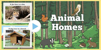 Animal Homes PowerPoint - animal homes, animal habitats, where animals live, where different animals live, habitats, environments, animals powerpoint, ks2