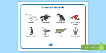 Antarctic Scene Word Mat - antarctic scene, word mat, word, mat, antarctic, polar regions, polar, scene
