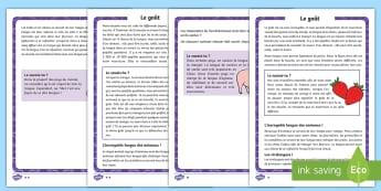 Fiches d'informations différenciées : Le goût - langue, bouche, sens, saveurs, cycle 2, cycle 1
