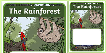 The Amazon Rainforest Topic Editable Book Cover - the amazon, rainforest, forest, trees, editable, book, cover, book cover, animals, plants, tropical, exotic, green, tiger
