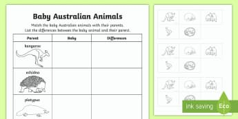 Baby Australian Animals Cut and Paste Activity Sheet-Australia - Australian Curriculum Biological sciences, baby animals, baby Australian animals, Australian animals