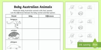 Baby Australian Animals Cut and Paste Activity Sheet-Australia - Australian Curriculum Biological sciences, baby animals, baby Australian animals, Australian animals