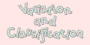 'Variation and Classification' Display Lettering - variation, classification, variation and classification lettering, variation and classification display