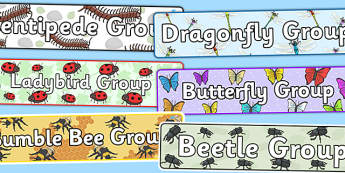 Minibeast Group Signs - minibeast, class groups, signs, display