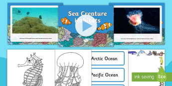 World Oceans Day Resource Pack - sea, water, Earth, geography, world, antarctic ocean, pacific ocean, Atlantic Ocean, Arctic Ocean, S