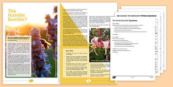 GCSE Style Reading and Writing Assessment Bumblebees - Reading, non-fiction, comprehension, PEE, writing, GCSE, assessment