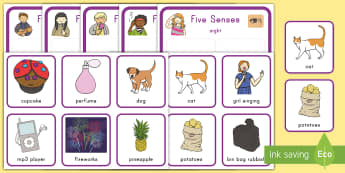 Five Senses Matching Cards - All About Me, Five Senses, See, Hear, Taste, Smell, Feel, Touch, Science, Hands On, Center Activity