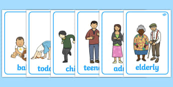 Human Growth Display Posters - Growth Topic, Grow, Ourselves, All About Me, Growing, baby, child, adult, growing up, age, old, young