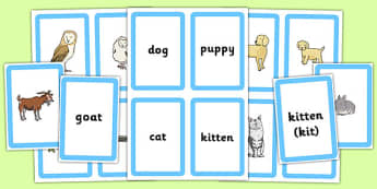 Animals and Their Young Matching Picture and Word Cards - animals, young, matching, picture, word cards