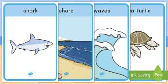 Beach Habitat Vocabulary Display Posters - Ocean, seaside, Animals, Vocabulary, summer, holiday, wall, classroom, roleplay