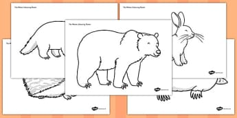 The Mitten Colouring Sheets - the mitten, colouring sheets, colour