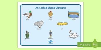 An Lachín Bheag Ghranna Word Mat - An Lachín Bheag Ghranna, the ugly duckling, gaeilge, word mat, words, mat