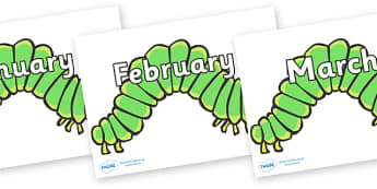 Months of the Year on Hungry Caterpillars to Support Teaching on The Very Hungry Caterpillar - Months of the Year, Months poster, Months display, display, poster, frieze, Months, month, January, February, March, April, May, June, July, August, Septem
