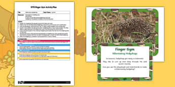 EYFS Hibernating Hedgehogs Finger Gym Plan and Resource Pack