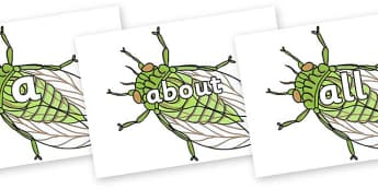 100 High Frequency Words on Cicada - High frequency words, hfw, DfES Letters and Sounds, Letters and Sounds, display words