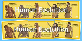 Human Evolution Timeline - human evolution, timeline, human, evolution