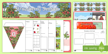 Strawberry Season Early Childhood Resource Pack - plants, fruit, strawberries, farm, farming, field trip, picking