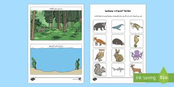 تصنيف حيوانات الغابة وحيوانات المحيط  - الحيوانات، حيوانات، مواطن الحيوانات، الغابة، المحيطا