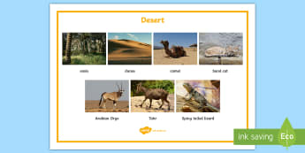 Desert Word Mat - UAE, ADEC, MOE, animals, emirates, information, non fiction, science
