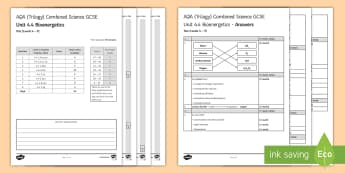 AQA (Trilogy) Unit 4.4 Bioenergetics Test - KS4 Assessment, Test. photosynthesis, equations, respiration, fermentation, anaerobic, aerobic