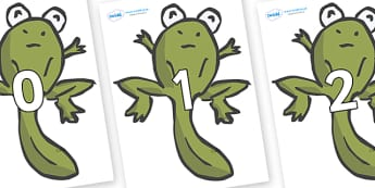 Numbers 0-100 on Froglets - 0-100, foundation stage numeracy, Number recognition, Number flashcards, counting, number frieze, Display numbers, number posters