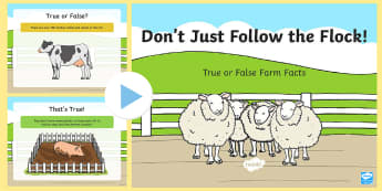 Don't Just Follow the Flock! True or False Farm Facts PowerPoint - Northern Ireland, Balmoral Show, 10th-13th May, Farming, Agriculture, Key Stage 1, animals, choice,