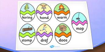 Afrikaans CVC O Words Easter Egg Matching Activity - afrikaans